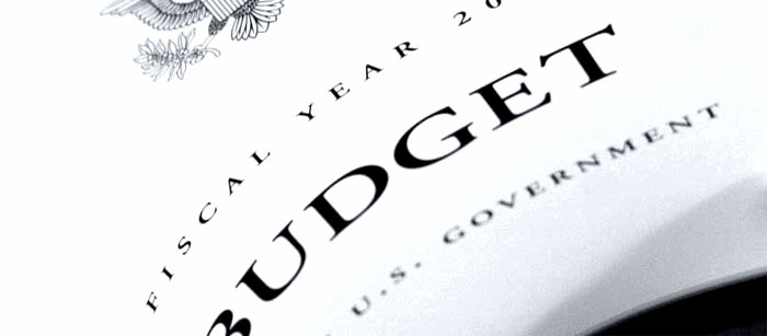 budget2cropped_edited-1