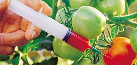 On Octobert 23, Renee Shur wrote an in-depth post on California's Prop 37 and the fight to label GMOs (genetically...